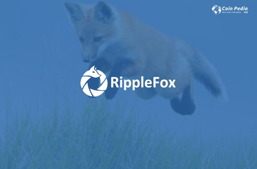 RippleFox Exchange Ripple trade How to use a Ripple account