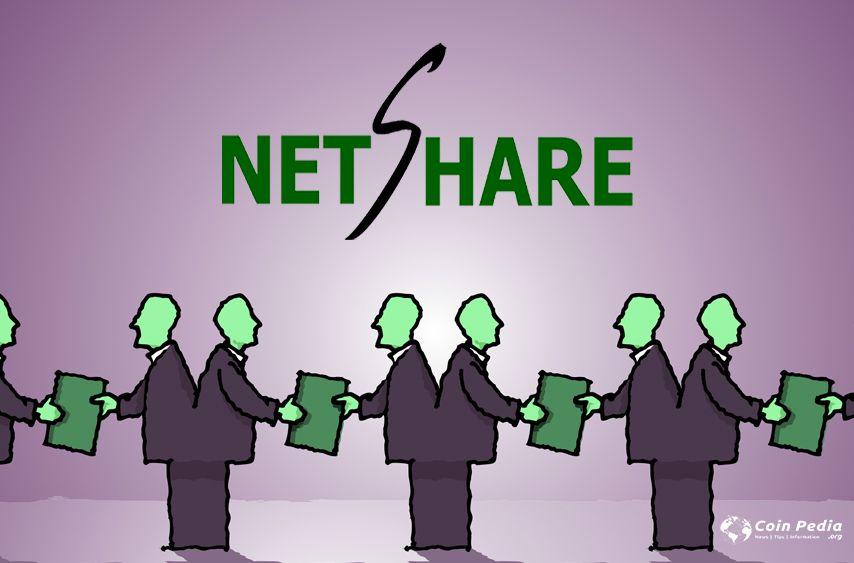 Netshare.co   Investment and Funding at Netshare   Netshare review