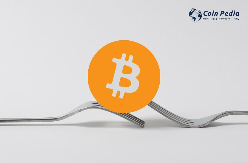 What is Bitcoin Fork | Bitcoin fork | blockchain technology | Bitcoin fork meaning