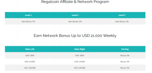 Affiliate & Networking program