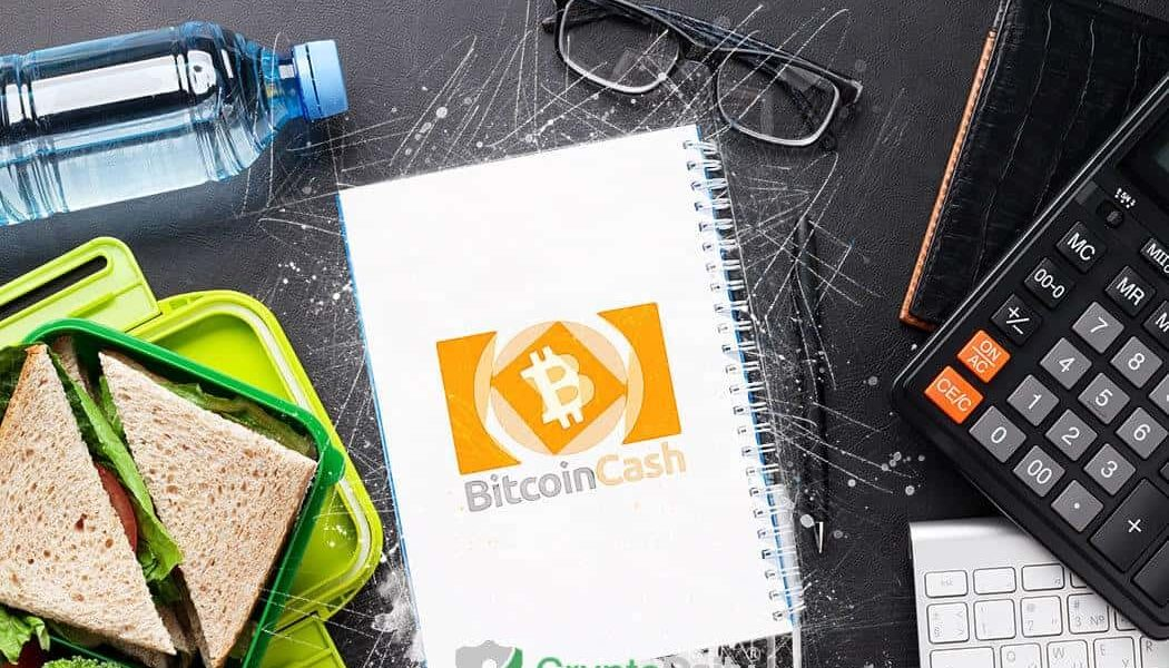 Insight Review of the Bitcoin Cash SV