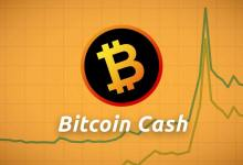 Photo of BCH Price Analysis: Rallies to New Yearly Highs Amid Increased Buying Interest