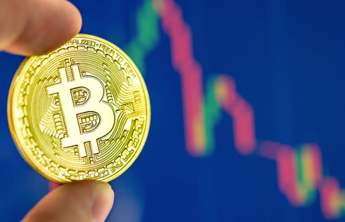 #2. Continuously Focus On Bitcoin