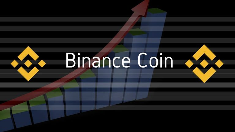 Binance Coin Continuously Surges To 13%! What May Be The Reason?