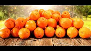 Photo of Oranges Will Be Put On The Blockchain, Sounds Interesting!
