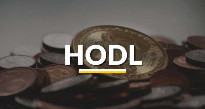What is Hodling?