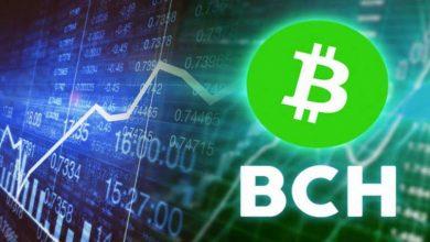 Photo of Bitcoin Cash Sheds Off 10% Following Block Halving As BTC Tanks Below $7k