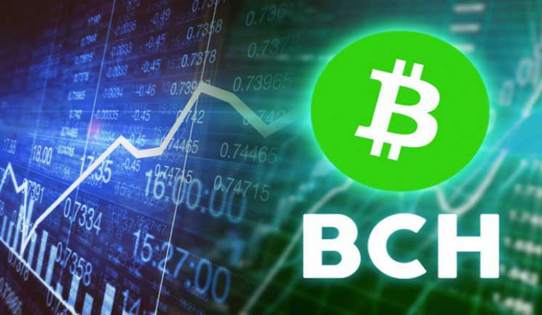 BCH Price Rallies by 11% in as First BCH Halving Sets in