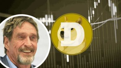 "Photo of John McAfee Believes Dogecoin ""Will Go To The Moon"""