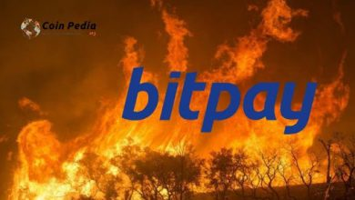 Photo of Controversy Raises As Bitpay Rejects $100,000 For Amazon Rainforest