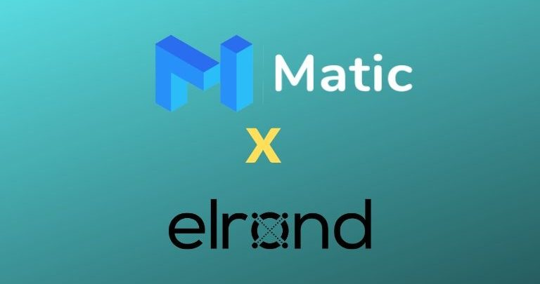 Matic Network and Elrond Engage in Joint Blockchain Infrastructure Research