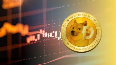 Photo of The Story Behind Dogecoin (DOGE): From Meme To $50 Billion To Moon!