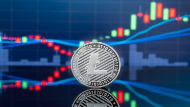 Photo of Litecoin Price Analysis: LTC/USD Stages Run To $50 Amid 24 Hour 5% Rise