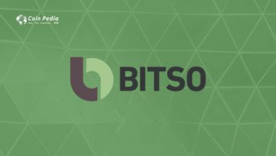 Photo of Bitso Exchange Review: Mexican Fiat to Crypto Exchange
