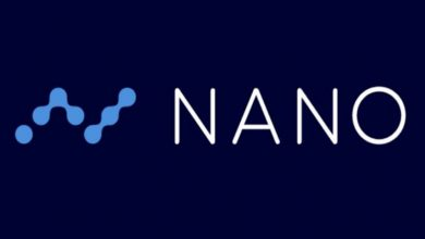 Photo of NANO Price Analysis: Reaches Yearly Highs Amid Crypto Market Correction
