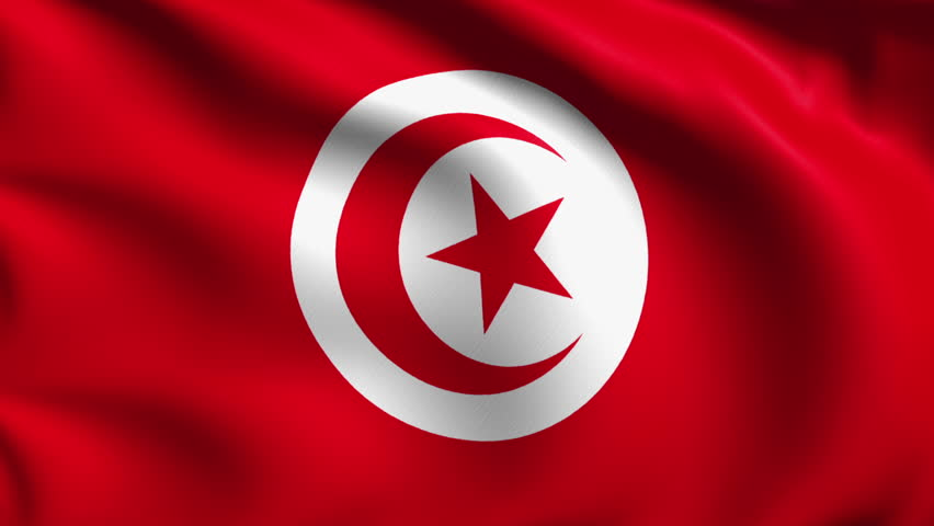 Tunisia Launches Central Bank Digital Currency, E-Dinar