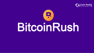 Photo of Bitcoin Rush Review: Popular Auto-Trading Bot