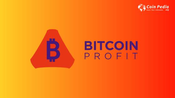 Bitcoin Profit Review
