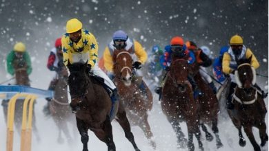 Photo of Horse Racing: The Most Elite Gambling Game in the World