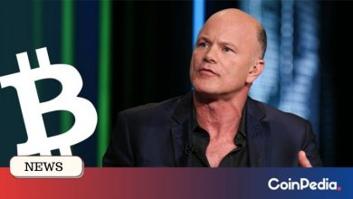 Photo of Mike Novogratz reveals why the Bitcoin price is surging