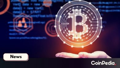 Photo of Real Bitcoin Dominance is Nearly 80 percent, New Tool Slaps CMC's BTC Dominance Calculation