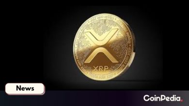 Photo of Ripple's XRP Appeared in Official US Bill Proposal, Here's How XRP Army Reacts