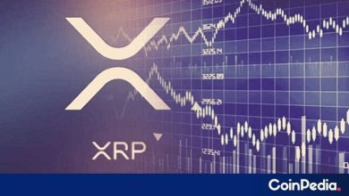 Photo of Top 5 Reasons XRP Could Hit $1 This Year