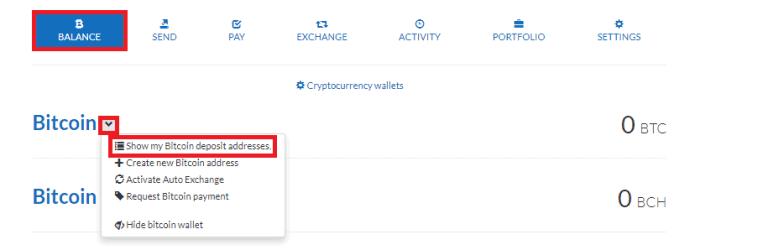 cryptonator-withdraw-fund
