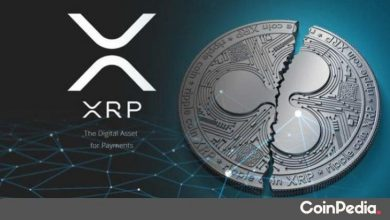 Photo of $65 Million Worth Xrp Shifted by Top Xrp Delister in the Last 24 Hours