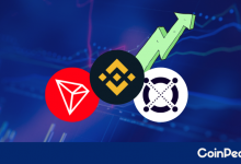 Photo of ERD Resumes Uptrend With 47%, TRX Follows At 20% and BNB With 8%