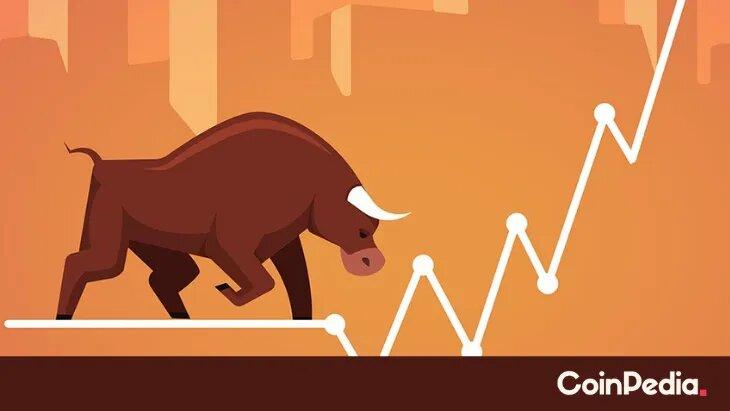 defi-bull-market