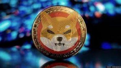 Photo of Will Shib Army get RobinHood to list SHIB? Shiba Inu Price Tumbles Despite Addition to Coinbase Custody
