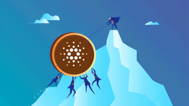 Photo of Cardano Is About to Explode! Reports Suggest Cardano Is Undervalued!