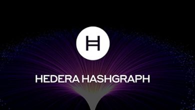 Photo of Hedera 2nd-Anniversary Of Open Access, Here's what to expect With HBAR Price?