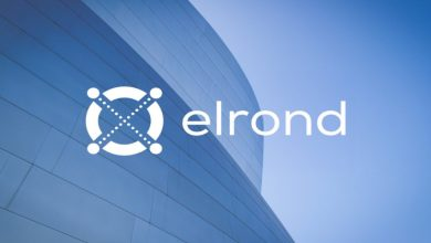 Photo of Elrond(EGLD) Price Could Smash $500 With Fewer Efforts Within This Bull Cycle!