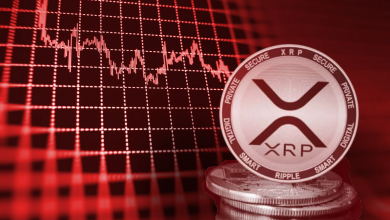Photo of Everything You Need To Know About Airdrop For XRP Holders