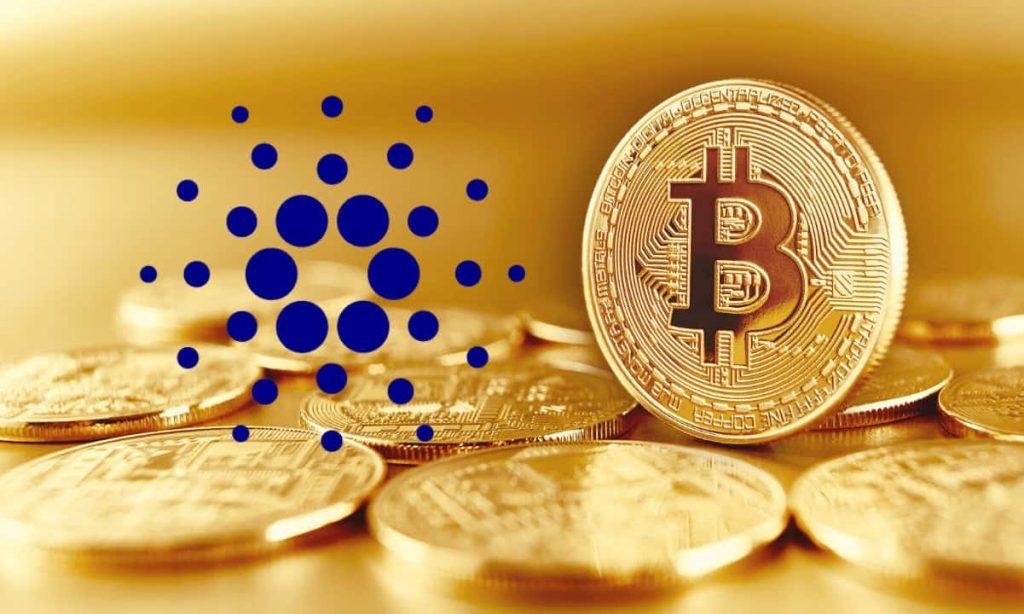 BitcoinCardano-min