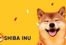 Photo of Shiba Inu To Enter Top 10 Crypto ! SHIB Price Surged More Than 50%
