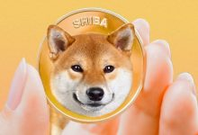 Photo of Shiba Inu Just Flipped DOGE ! What's Next For SHIB Price ?