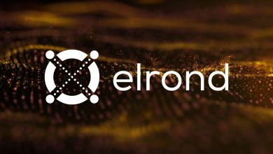 "Photo of Binance Triggers Elrond Mania! EGLD Price to ""Moon-Soon""!"