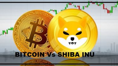 Photo of Alert! Here's How Bitcoin Price Would Redirect the SHIB's Cash Flow!