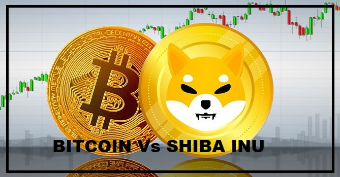 Alert! Here's How Bitcoin Price Would Redirect the SHIB's Cash Flow!
